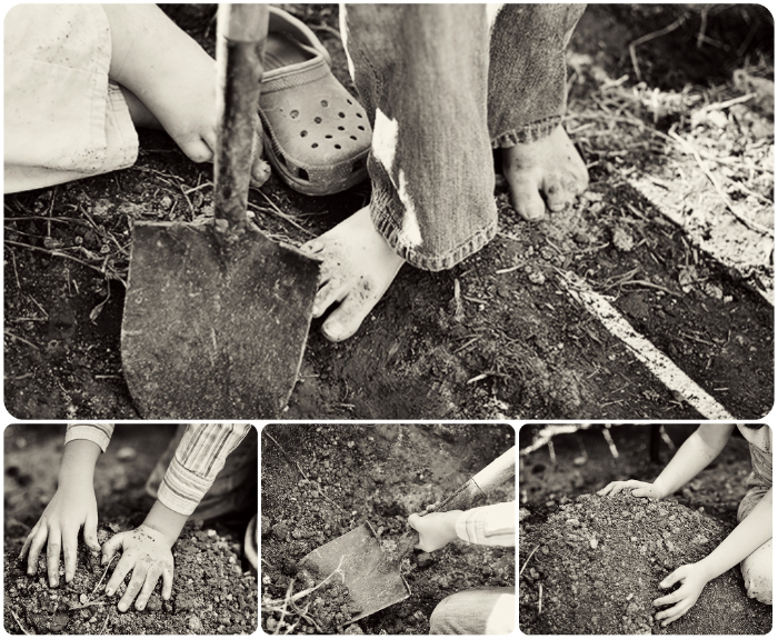 Digging in the dirt collage