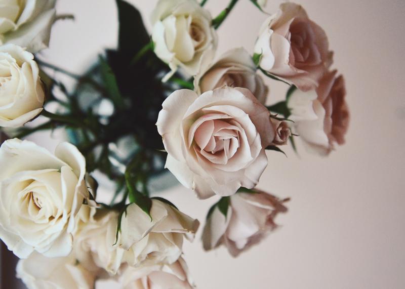Roses web